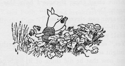 Piglet with Violets
