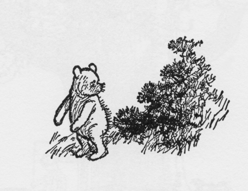 Pooh and the Gorse Bush