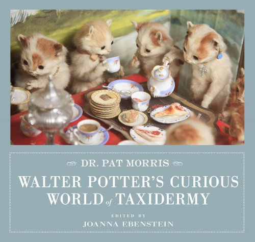Walter Potters curious world of taxidermy book cover